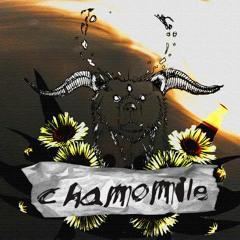 Chamomile - rradoboi & comedown  (Prod. TahaBeats)