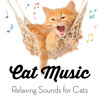 Soft Piano Music for Cats
