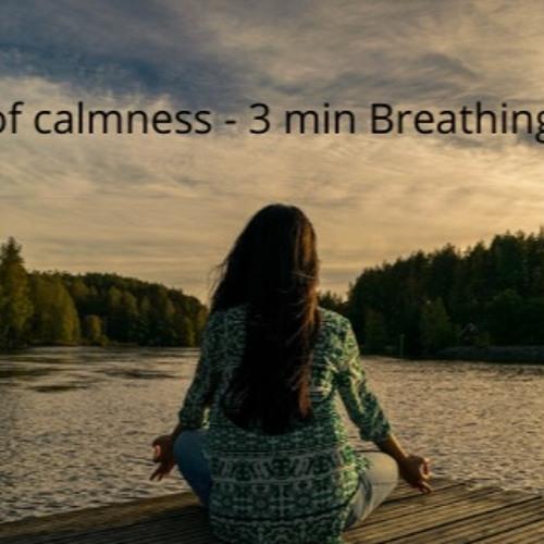7 Days of Calm