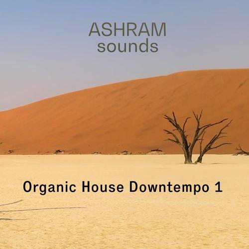 ASHRAM Organic House Downtempo 1 (Sample Pack Demo Song)