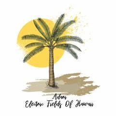 Adarí - Electric Fields Of Hawaii [trndmsk]