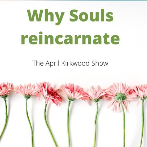 Why Souls Reincarnate