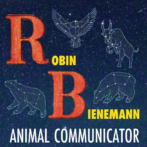 Animal Communicator - FINAL