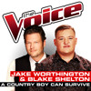 A Country Boy Can Survive (The Voice Performance)