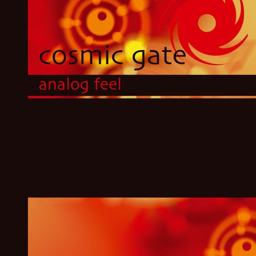 Analog Feel (Rank 1's Digital Re-Harsh)