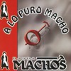 Banda Machos - Mi luna, mi estrella