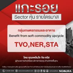 แกะรอย Sector หุ้นรายไตรมาส2/2021  EP.01 กลุ่มเกษตรกรรมและอาหาร TVO, NER, STA