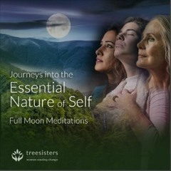 Prayers for the Amazon Forest and Indigenous Custodians ~ Full Moon May 2020