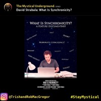 David Strabala: What Is Synchronicity?