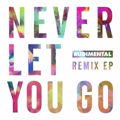 Never Let You Go (feat. Foy Vance) (Feder Remix)