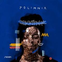 Polimnia - Arrivederci.. Ancora (Marco Tegui Remix) [Salgari]