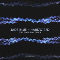 Hardwired (Original Mix) [feat. Shane Blackshaw]