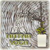 Music for Yoga Class (New Age Music)