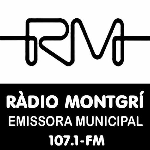ESPECIAL INFORMATIU CORONAVIRUS - JOSEP MARTINOY 17 MARÇ 2020