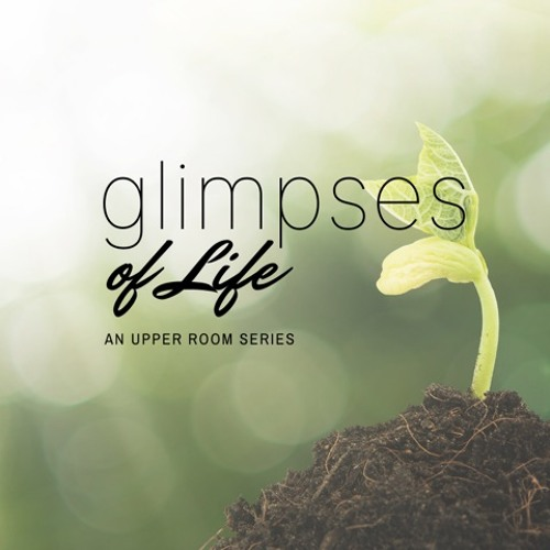 Glimpses of Life