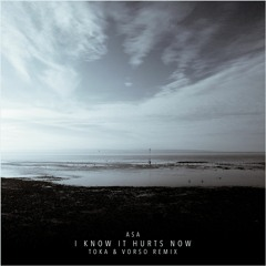 Asa — I Know It Hurts Now (Toka & Vorso Remix)