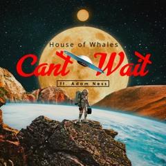 Can't Wait (feat. Adam Ness)