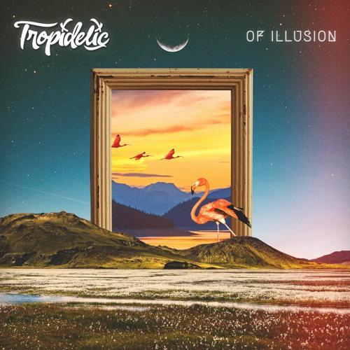 Of Illusion