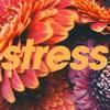 Download No Stress (Instrumental) Mp3