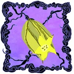 FRUITCAST #26   volker arnold   KARAMBOLAGE