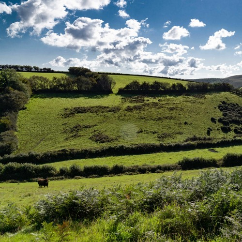 British Countryside Atmosphere