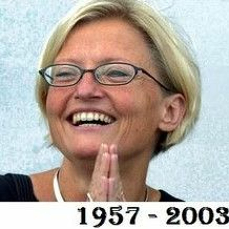 50BC: Året 2003