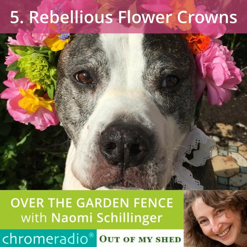 OVER THE GARDEN FENCE 5   Rebellious Flower Crowns