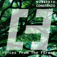 Hubberto Constanzo - Voices From The Forest