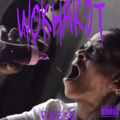 Reese - Wokhardt (Official Audio)