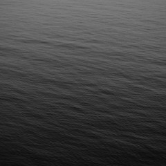 Avicii - Fade Into Darkness (BLACK WINDOM REWORK)