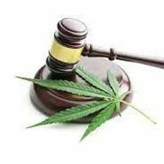 legalización de la marihuana -Oratoria Forense y Debate Jurídico U3
