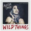 Wild Things (NuKid Remix)