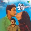 Download Kya Jeena Tere Bina (Duet) Mp3