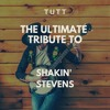 Download Because I Love You (Dance Version) (Karaoke Version Originally Performed By Shakin' Stevens) Mp3