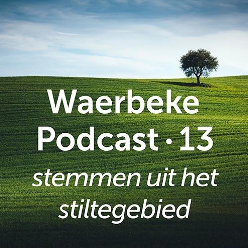 WP13 • Martin Ruebens • Stilte voor een innovatieve overheid