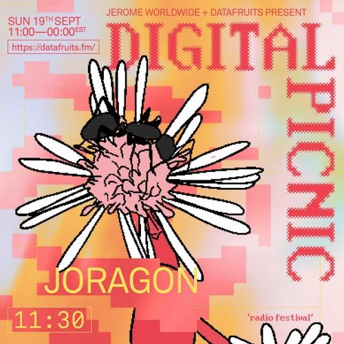 JEROME WORLDWIDE DIGITAL PICNIC - JORAGON