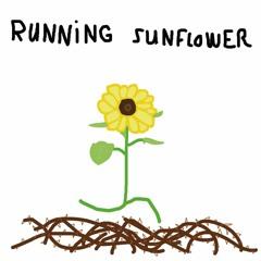 Running Sunflower