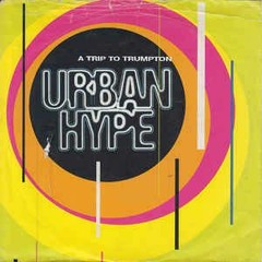 Urban Hype - Trip To Trumpton (Nicky Havey Remix) WIP