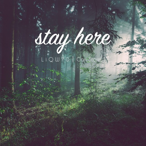 LiQWYD & Carl Storm - Stay Here (Free download)