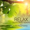 Suono dell'Acqua per RiIlassamento Profondo e Massaggio