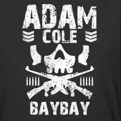 Adam Cole Theme (mash)