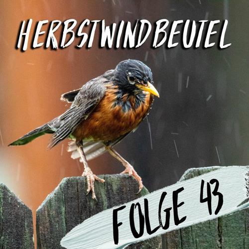 #43 - Herbstwindbeutel
