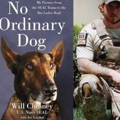 No Ordinary Dog Navy Seal Will Chesney and his hero dog Cairo