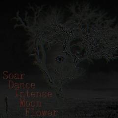 Dispel [Soar Dance Intense Moon Flower]