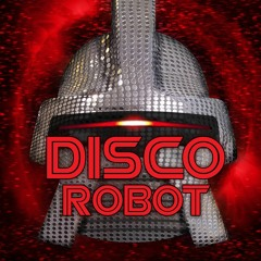 Interview with Disco Robot