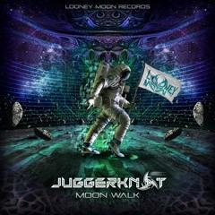 Juggerknot & Radikal Moodz - Fish Thali Blast