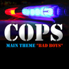 Bad Boys (Main Theme from