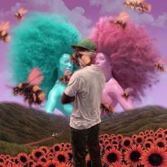 Who Dat Boy X Kiss Me More (Tyler, The Creator & Doja Cat Mashup)