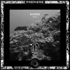 PREMIERE:  Bichord - Zodiac [WDM06]