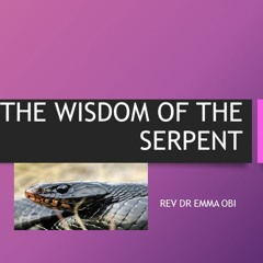 Leadership Summit- THE WISDOM OF THE SERPENT A